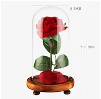 Forever rose with dome glass
