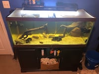 80 gallon fish tank- everything included except the fish  Fairfax, 22033
