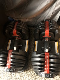 Bowflex SelectTech 552 Adjustable Dumbbells from 5 to 52.5 lbs