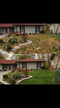 Leaf clean up/ fall clean ups Hamilton