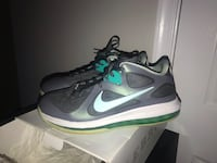 Lebron 9 low Easter