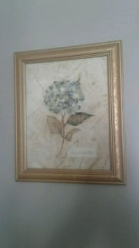 Hydrenga picture with gold frame Kitchener, N2K 4J7