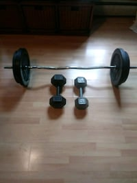 Weights and curl bar Swansea, 02777