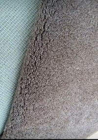 Large Carpet and Padding, JUST REDUCED! NO HOLDS!