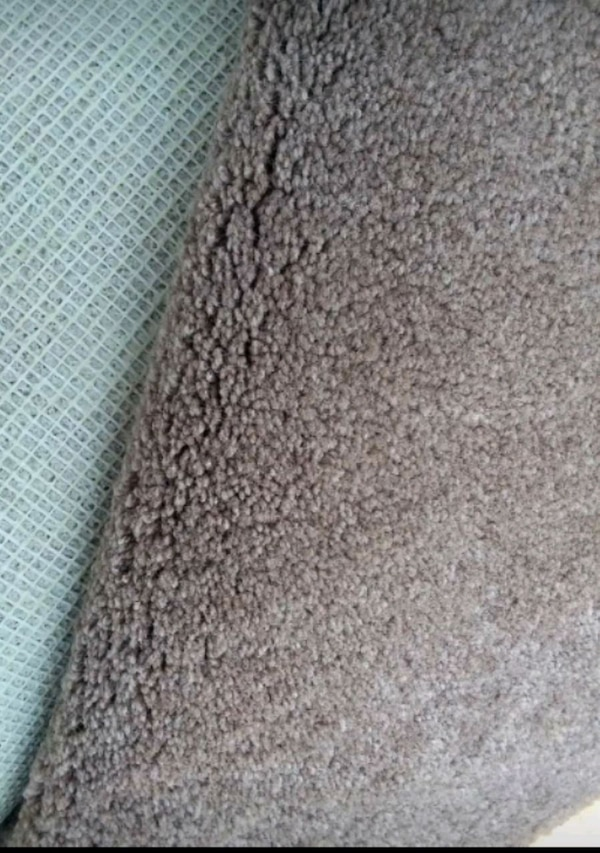 Large Carpet and Padding, JUST REDUCED! NO HOLDS! c32c9302-691d-4459-b6d4-94f65cf4af91