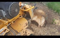 Stump grinding  Norwich, 06360