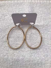 Gardens 2 Gold Toned Oval Fashion Hooped Earrings  Shepherdstown, 25443