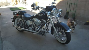 2005 harley soft tail) low miles