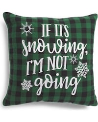 Brand new pillow - if it's snowing I'm not going  Oakville, T1Y
