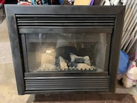 Princeton electric fireplace insert Deer Park, 11729