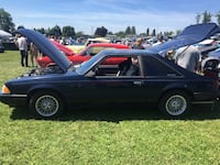 Ford - Mustang - 1991 Maple Ridge