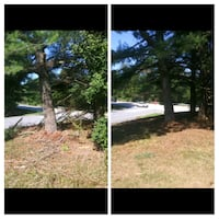 yard cleaning and tree service Laurel, 20707