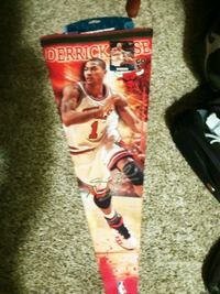 D rose bulls nba banner rare only 2009 made St. Catharines, L2T 2L5