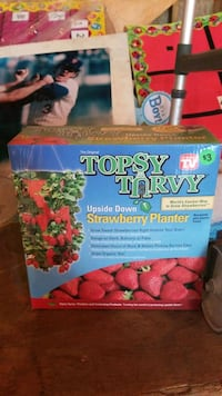 strawberry planter Haverhill, 01832