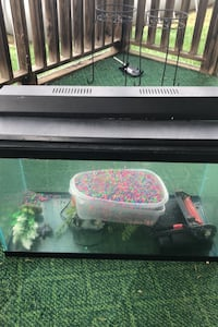35 gallon fish tank with plants,gravel, light, filter and lid