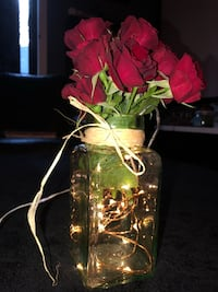 Glass jar with LED lights ,tan ties,  with a dozen roses  Nanaimo, V9T 2N6