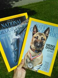 national geographic hero dogs