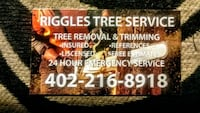 Need ground guy for tree service have experience