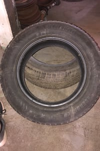 1 Evergreen winter tire 205/65r16