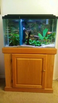 29gl fish tank and oak stand Winter Haven, 33880