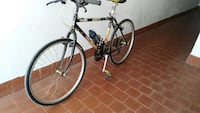 Mountain bike mimetica  cinelli Carrara, 54033