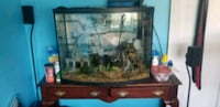 40 gallon curve fishtank with everything included even loads of deco