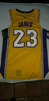 LEBRON JAMES AUTHENTIC LAKERS JERSEY Los Angeles, 90008