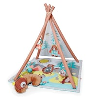 Skip hop Baby teepee and play mat Langley, V2Y 0S3