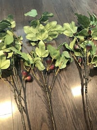 Pottery Barn 3 artificial Fig Leaf stems Vaughan