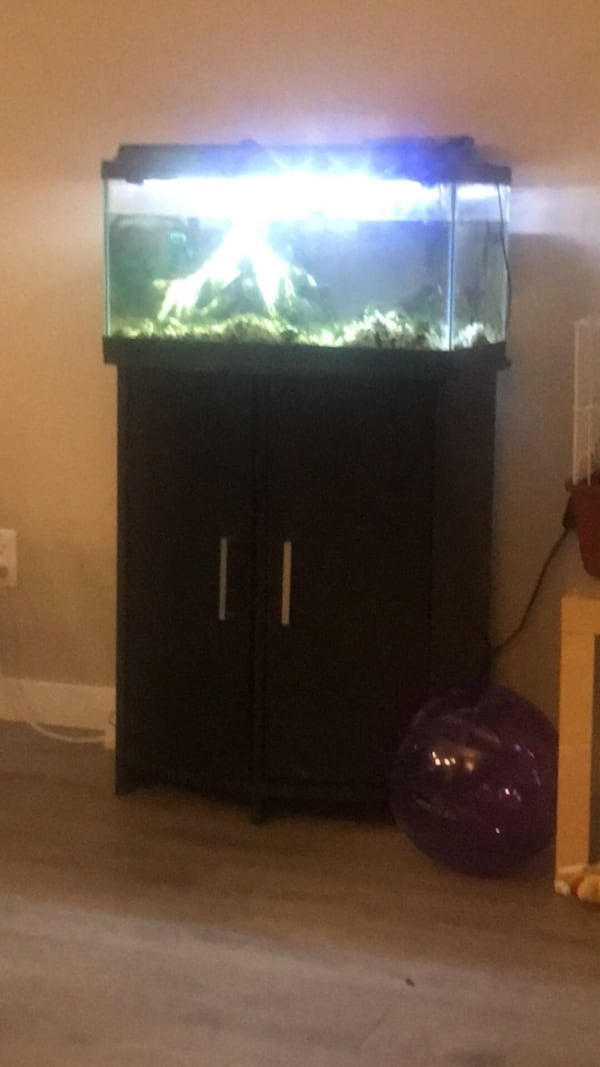 15 gal. Fish tank, and accessories 3