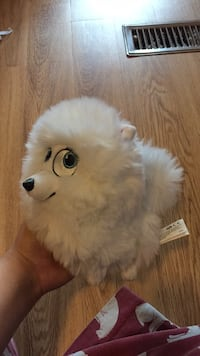 white and gray cat plush toy Strathroy-Caradoc, N0L 1W0