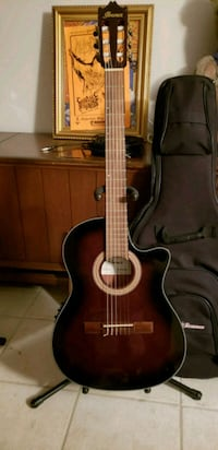 Ibanez Acoustic Electric guitar New.  Shorewood, 60404