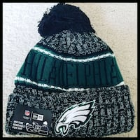 AUTHENTIC NFL FOOTBALL WINTER BEANIE HAT.  Washington, 20011