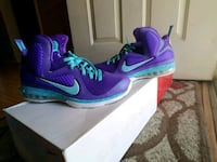 Lebron 9s (Summit Lakes) NDS Los Angeles, 91605