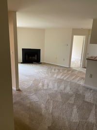 clean your carpet 3bR Washington