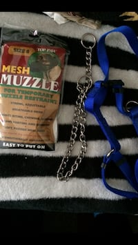 Dogs Muzzle, Choker Chain & Full Body Harness for Dogs Skokie, 60077