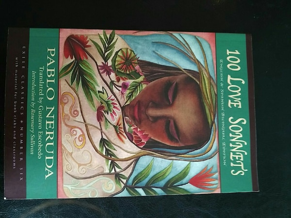 100 love sonnets book
