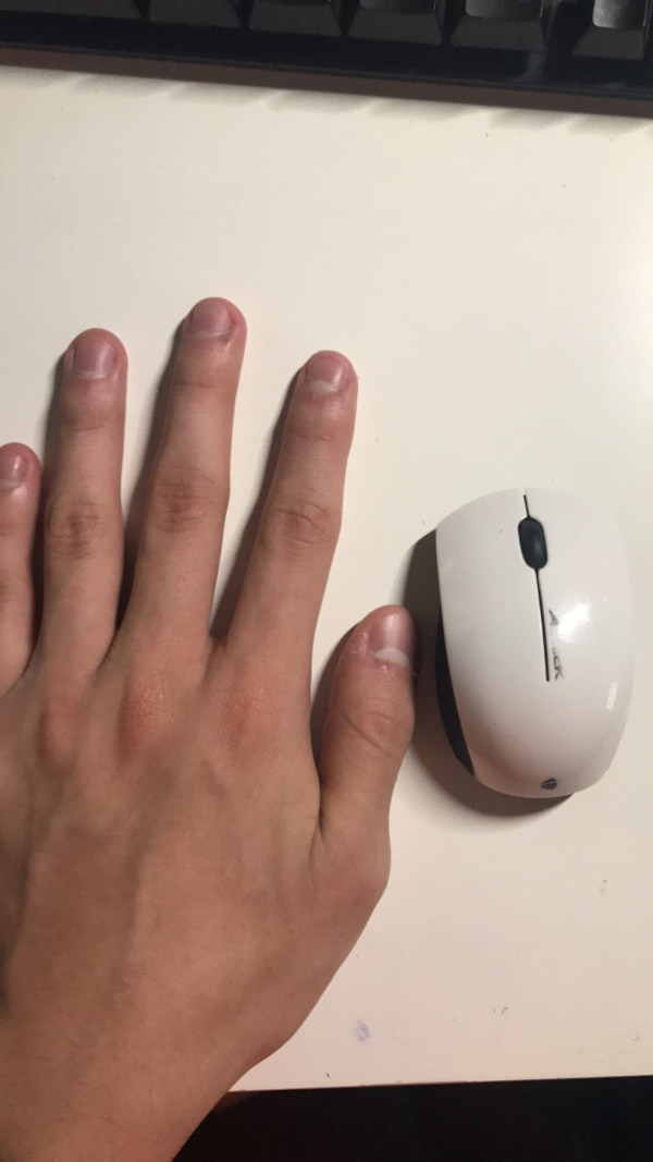 ab4124d75465 Used Small Mouse for sale in Newnan - letgo