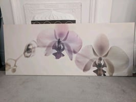 Ikea Orchid Canvas Picture