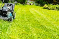 Get your Lawn Mowed Today! Lorton