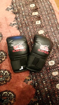 gloves Boxing