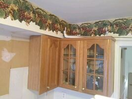 Kitchen Cabinets and Appliances -- Remodeling