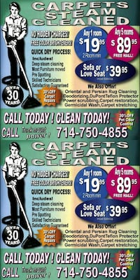 Carpet cleaning cleaner