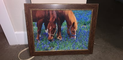 Horse painting still in the box