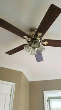 Ceiling fan with might  Hamilton, L9H 7J5