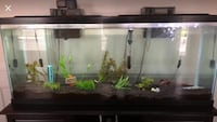 50 gal tank with stand obo Clarksville, 20759