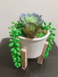 Homemade Succulent Plant with Wood Stand