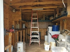red-and-gray aluminum extending ladder