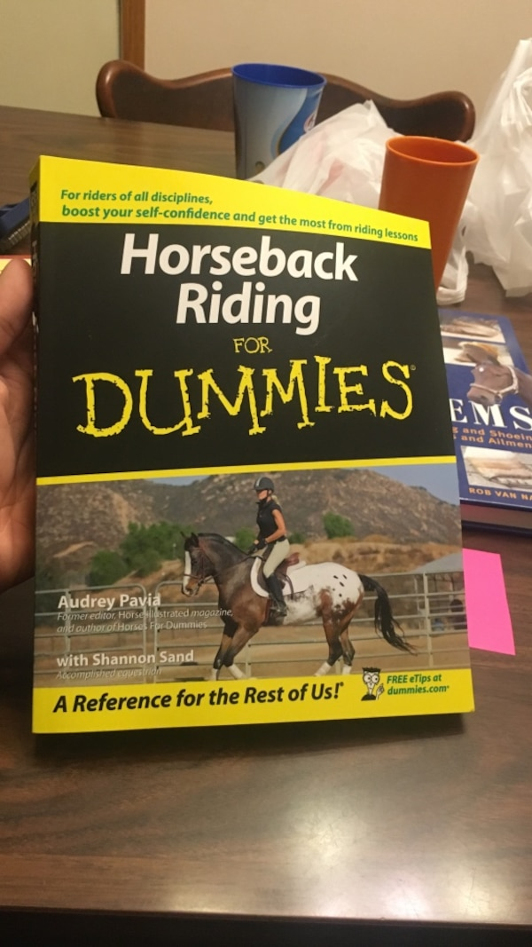 horse riding back for dummies