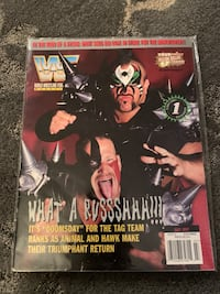 WWE/WWF Old Magazines
